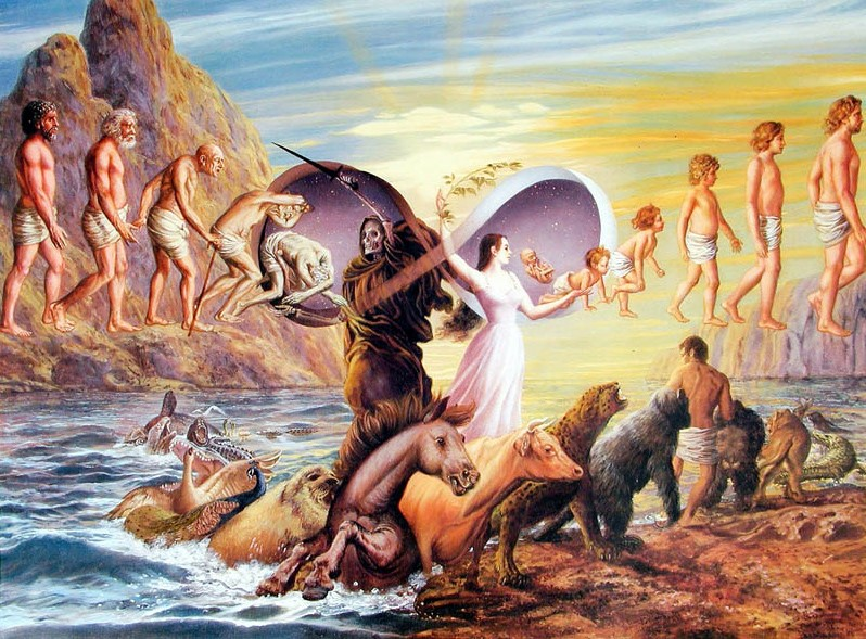 reincarnation afterlife theory
