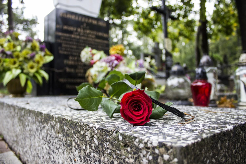 monument rose